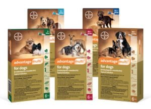 Advantage Multi for Dogs: Buy 9 doses get 3 free, buy 6 doses get 2 free!